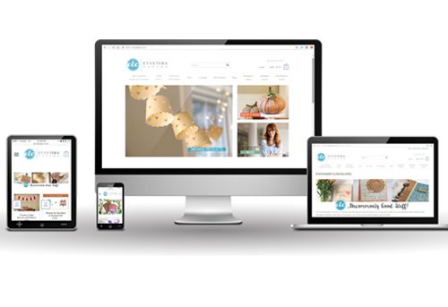 Website and Ecommerce